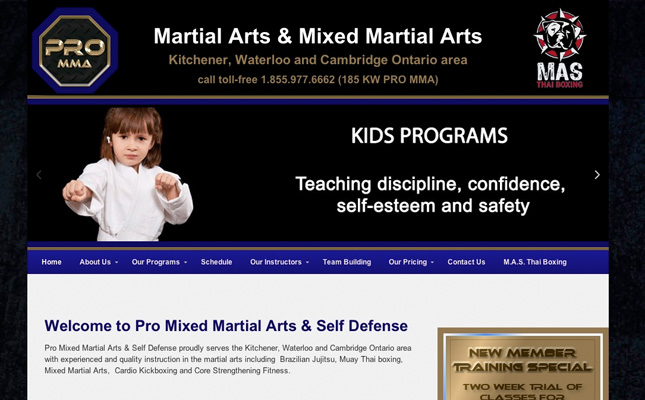 pro-martial-arts-website